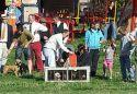 Show more details of Black Combe Country Fair