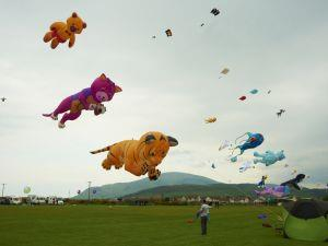 Western Lake District KiteFest 2012