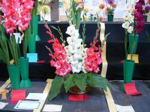 78th Annual Flower Show