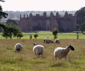 Melford Hall (National Trust)
