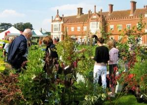 Autumn Plant Fair