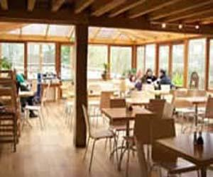 The Conservatory Cafe