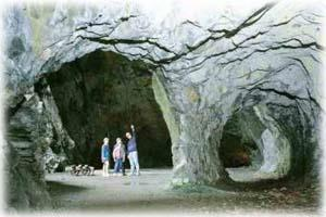 Llanfair Caverns & Farm Park
