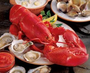 Cardigan Bay Seafood Festival