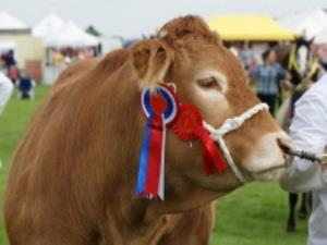 The Keighley Show