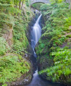 Aira Force Tea Room