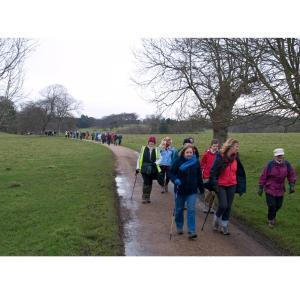Fit Together Walks