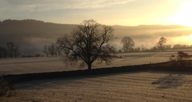 Frosty morning at the farm